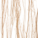 thicket_natural
